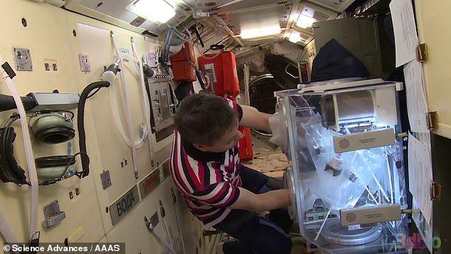 Биопечать в космосе