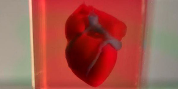 Живое 3Д сердце