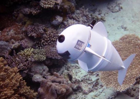 Рыбка-шпион создана на 3D-принтере